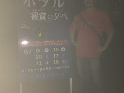 金沢市主催白鳥路ホタルの夕べに参加しました!