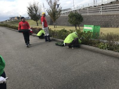 犀川河川敷の花壇の花植えボランティアに協力・参加させて頂きました!(^^)