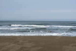 2月定例海岸清掃 @ 内灘海岸 | 内灘町 | 石川県 | 日本