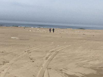 定例海岸清掃を実施しました!(*^▽^*)