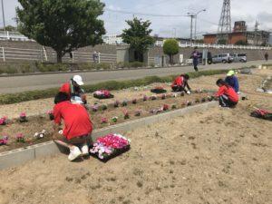 犀川河川敷にて花の苗植えボランティア活動行います!