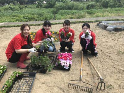 犀川河川敷にて花植えボランティアを行いました(^^)/