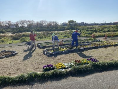 犀川河川敷の花苗植えボランティアを行いました!