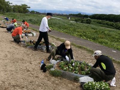 花の苗植えボランティアを行いました!